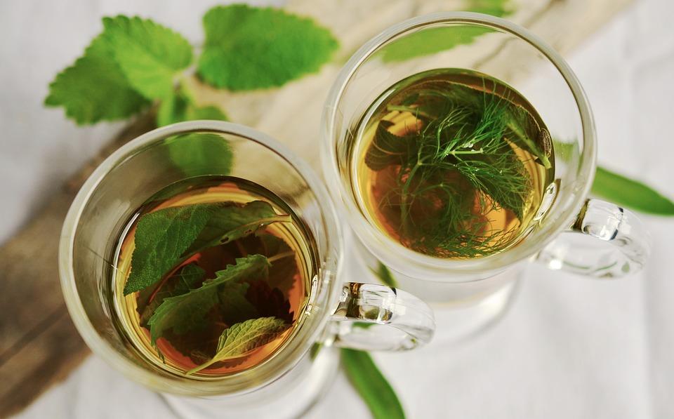 Recette de kombucha maison à la menthe, au gingembre et à la chlorophylle en 6 étapes faciles