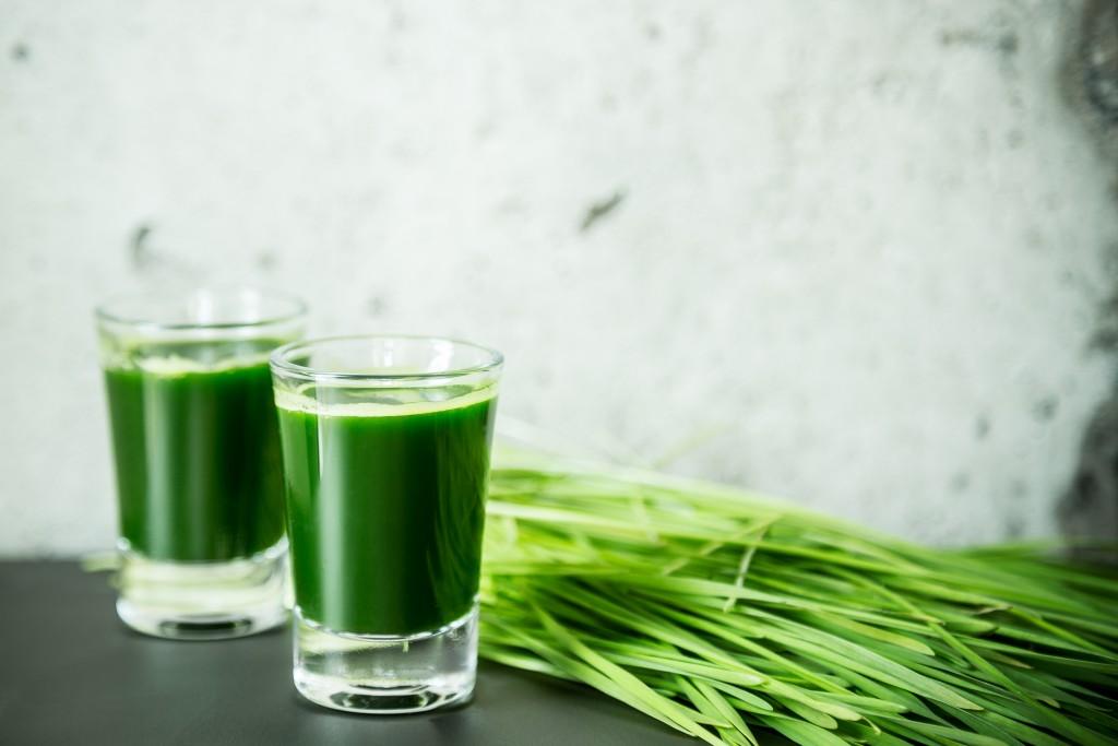 Le jus d'herbe de blé : my kind of shot!