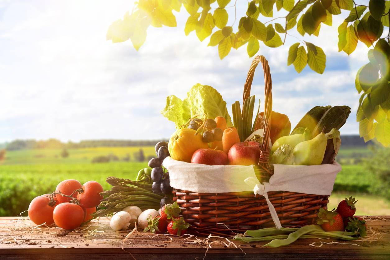 alimentation bio et musculation
